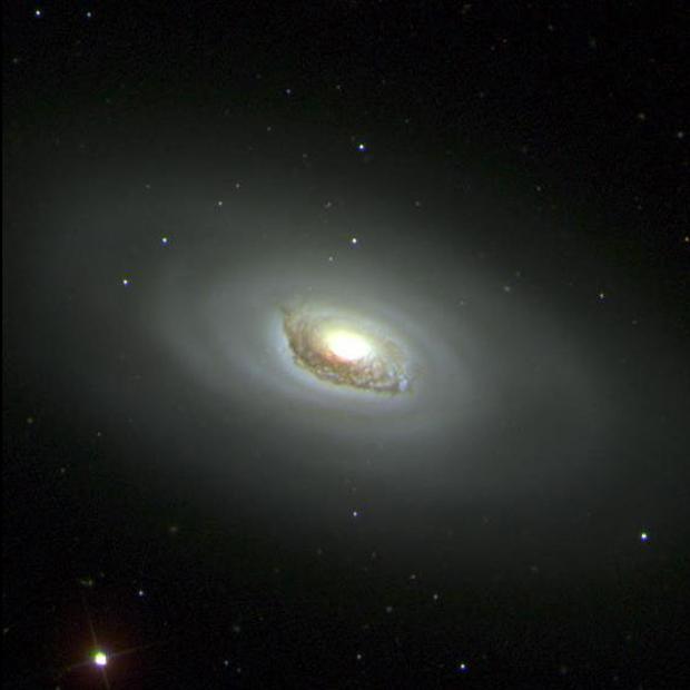 Sloan Digital Sky Survey galaxy Image