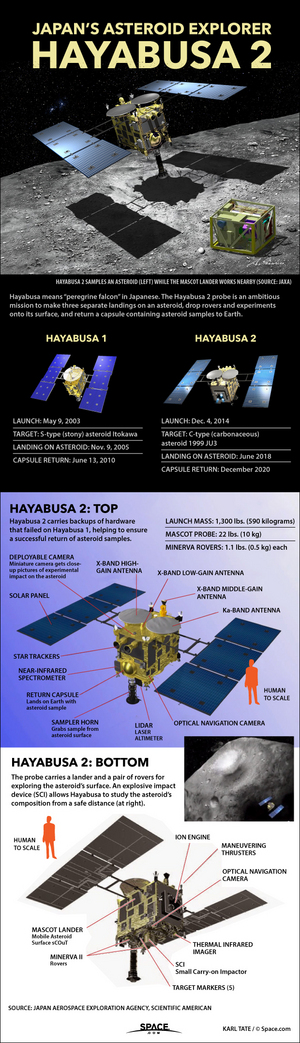 """Hayabusa2, the second in Japan's Hayabusa mission series, will drop probes on and take samples from asteroid 1999 JU3. <a href=""""http://www.space.com/27910-japan-hayabusa2-asteroid-mission-infographic.html"""">See how the Hayabusa2 asteroid sample-return mission works in this Space.com infographic</a>."""