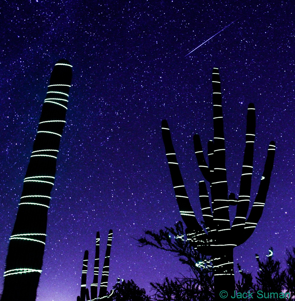 2014 Geminid Meteor with Light Painting