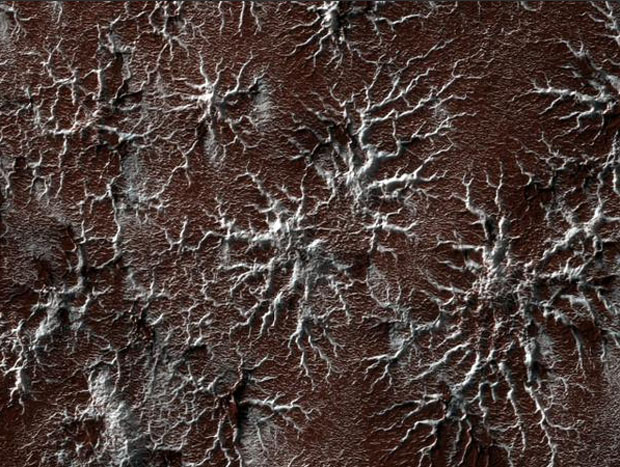 NASA's Mars Reconnaissance Orbiter has spied these strange spider-like shapes, formed by frozen carbon dioxide, on the Martian surface in the planet's south polar region.