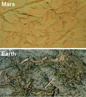 A comparison of cracks in Gillespie Lake outcrop on Mars and in a modern microbial mat in Bahar Alouane, Tunisia.