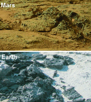 Knob-shaped structures on Mars compared to similar structures caused by erosion of microbial mats at Carbla Point, Western Australia.