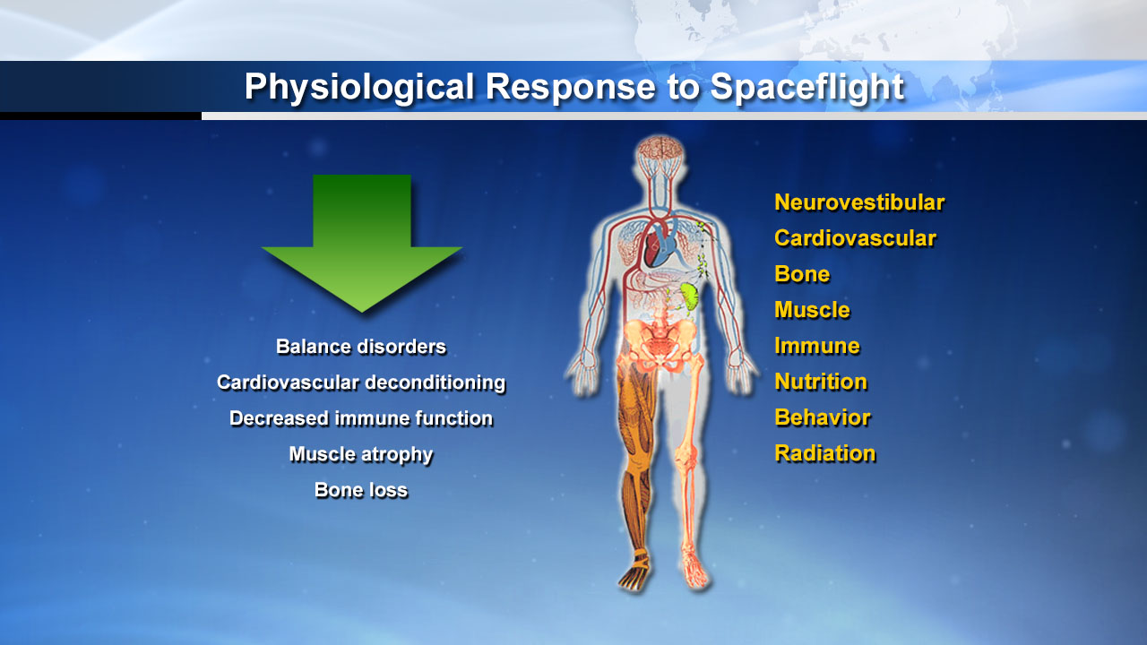 Potential Negative Physiological Responses to Spaceflight