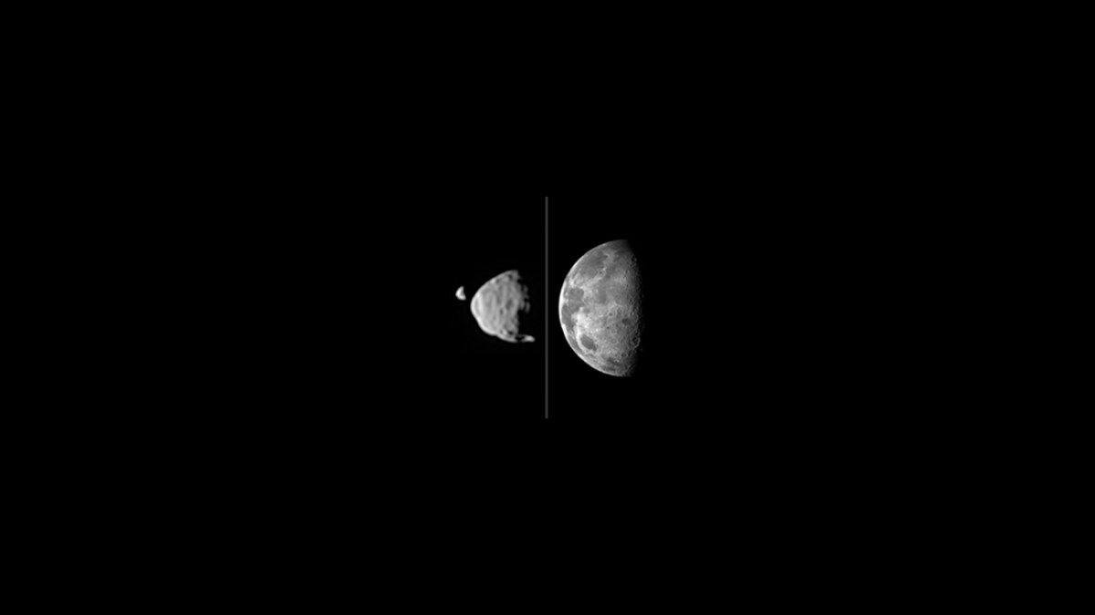 This illustration shows how big the moons of Mars appear from the surface of Mars, compared to the size of Earth's moon as seen from Earth's surface. Deimos (far left) and Phobos are shown together as they actually were photographed by NASA's Mars rover C