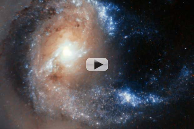 Galactic Dancers' Arms Twist To Its Partner | Video