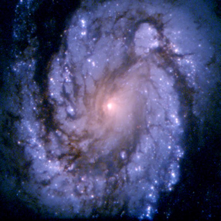 1994: Spiral Galaxy M100