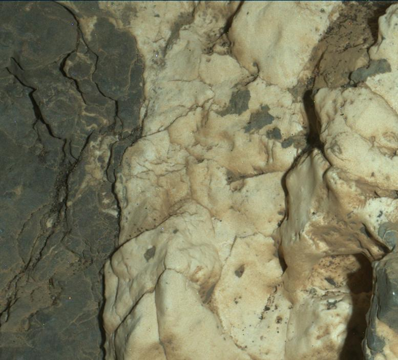 Curiosity Close-up of 'Garden City' Mineral Veins