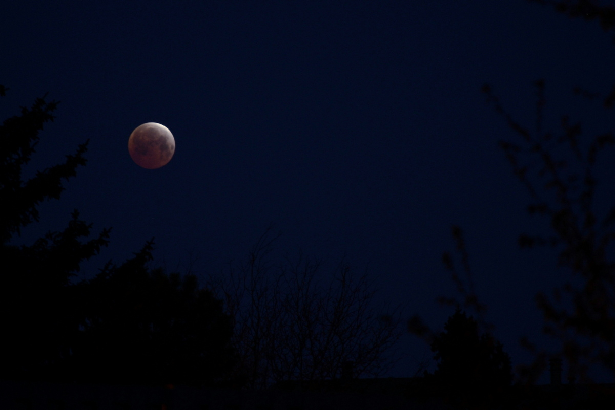 Skywatcher Joe Wiggins snapped this photo of the April 4 total lunar eclipse from his front yard on a cold, cloudless morning in Centennial, Colorado.