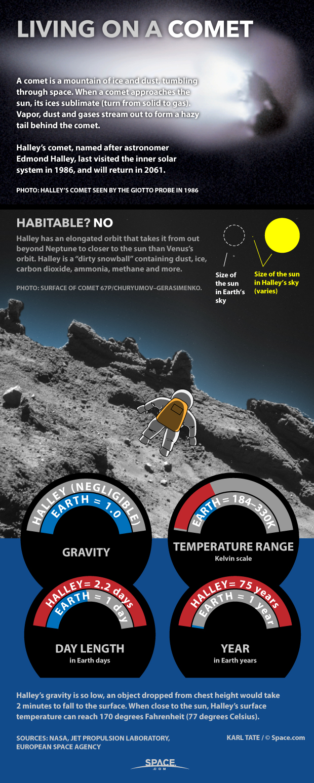 Living on a Comet: 'Dirty Snowball' Facts Explained (Infographic)