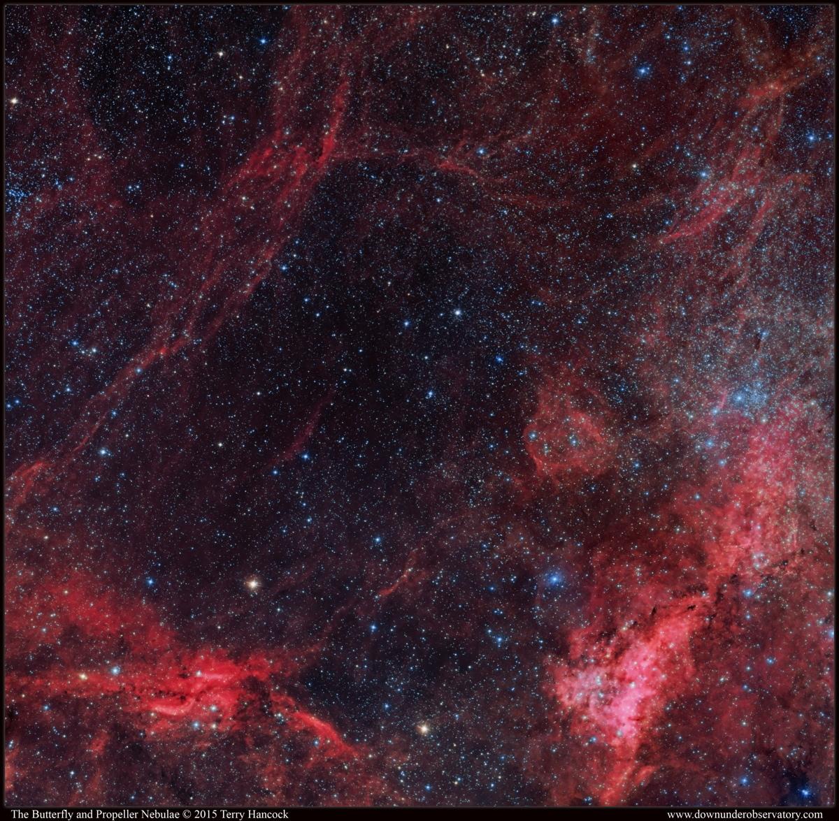 Part of the Gamma Cygni Region Including IC 1318a