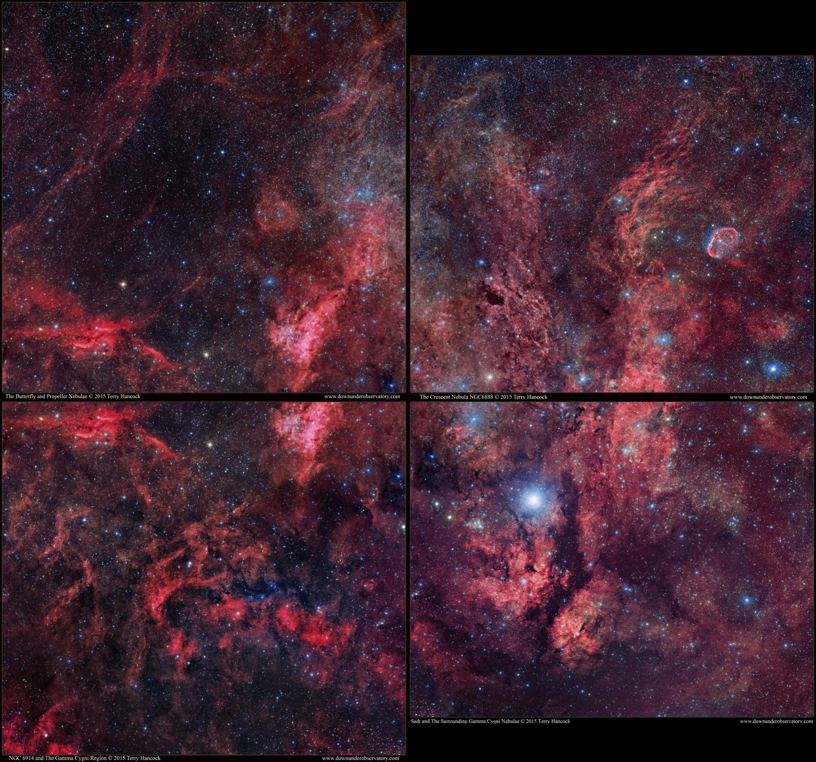 Amazing Gamma Cygni Nebula Photos By Amateur Astronomer Terry Hancock