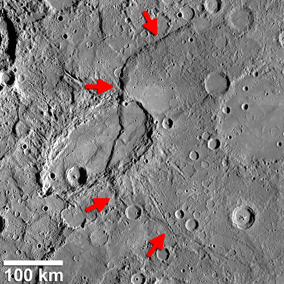 Beagle Rupes (identified by arrows) is a bow-shaped fault scarp on Mercury that is one of the most curved feature of its kind found by NASA's MESSENGER spacecraft. It is over 372 miles (600 kilometers) long.