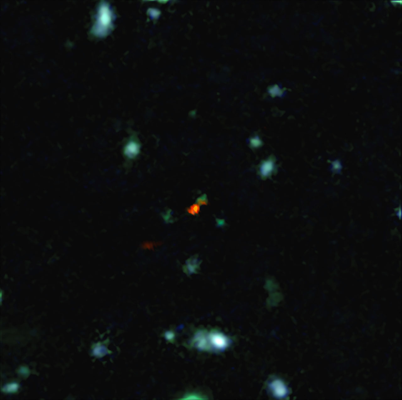 This Lopsided Ancient Galaxy Is the 1st View of Early Galactic Assembly