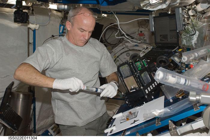 Astronaut Harvest