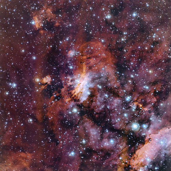 This new image, taken from the La Silla Observatory in Chile, spotlights part of the Prawn Nebula where newborn stars stud clouds of gas and dust.