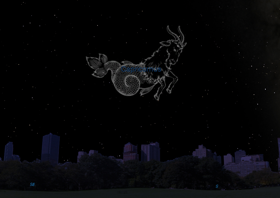 Artist's Rendition of the Constellation Capricornus