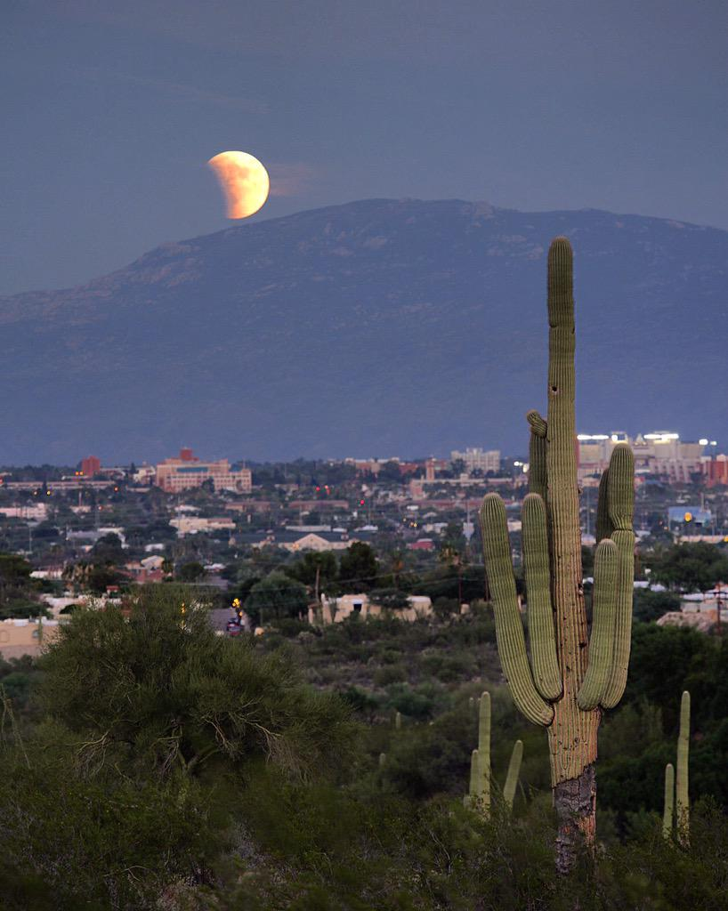 Supermoon Total Lunar Eclipse, Tuscon AZ