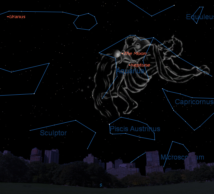Aquarius, the Water Boy