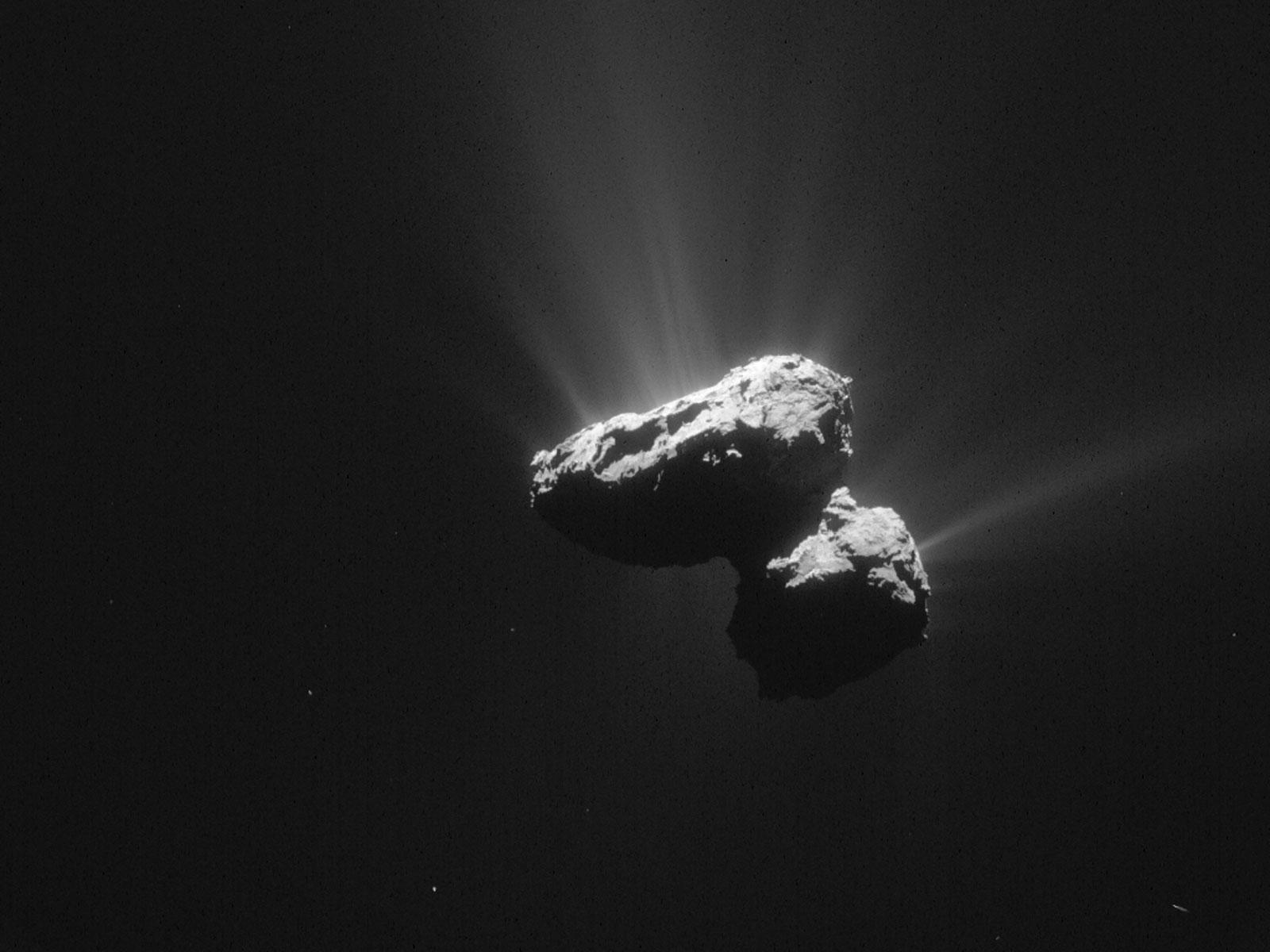 Comet 67P Tumbles Through Space | Space Wallpaper