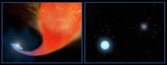 A blue straggler star forms by siphoning the mass from a red giant star it closely orbits in a binary system. In the second frame, the bright, hot white straggler orbits the remains of the first star, now a faint white dwarf.