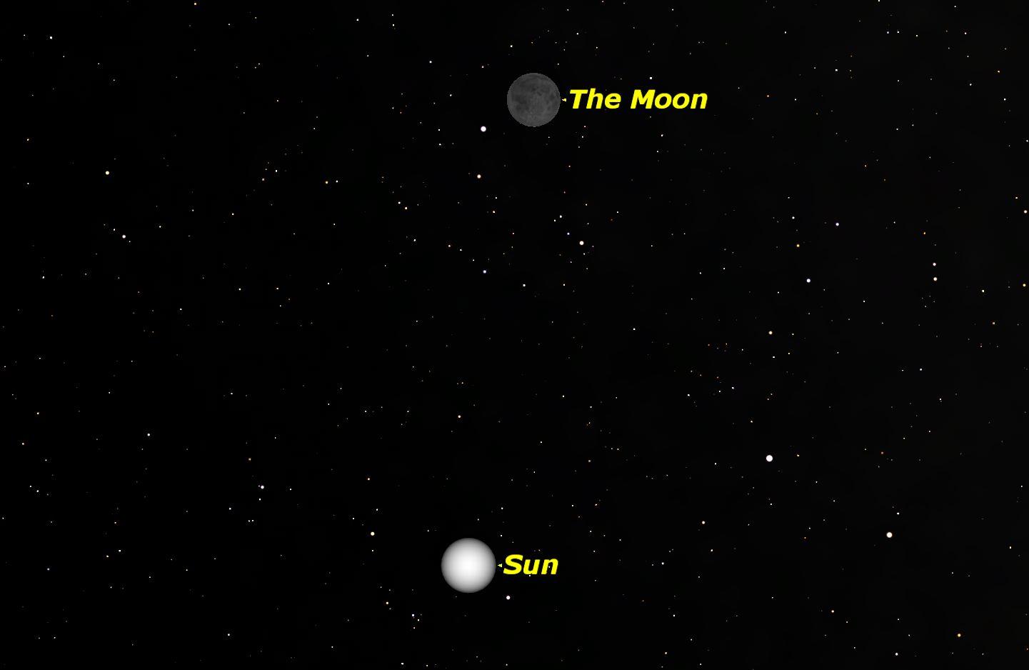 New Moon, January 2016