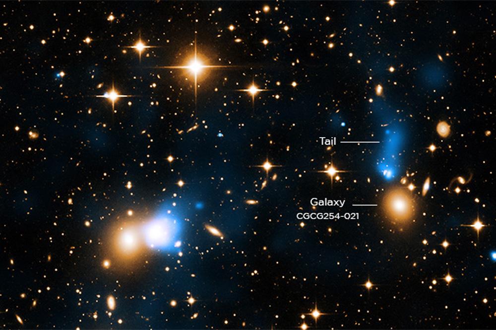 Inside Zwicky 8338 cluster, x-ray tail