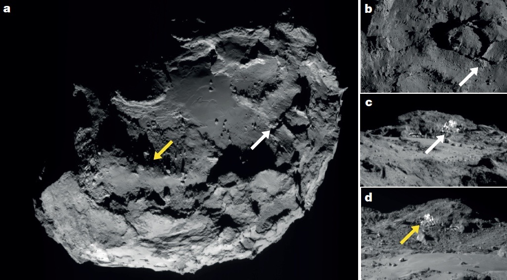 Exposed Water Ice on Comet Reveals Clues About Its Evolution