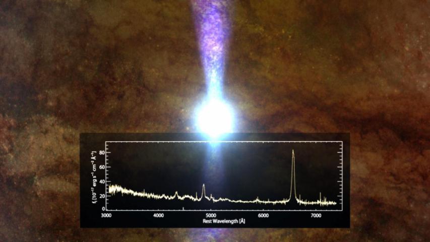 Changing-Look Quasar