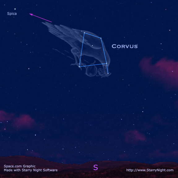 The constellation Corvus the crow.