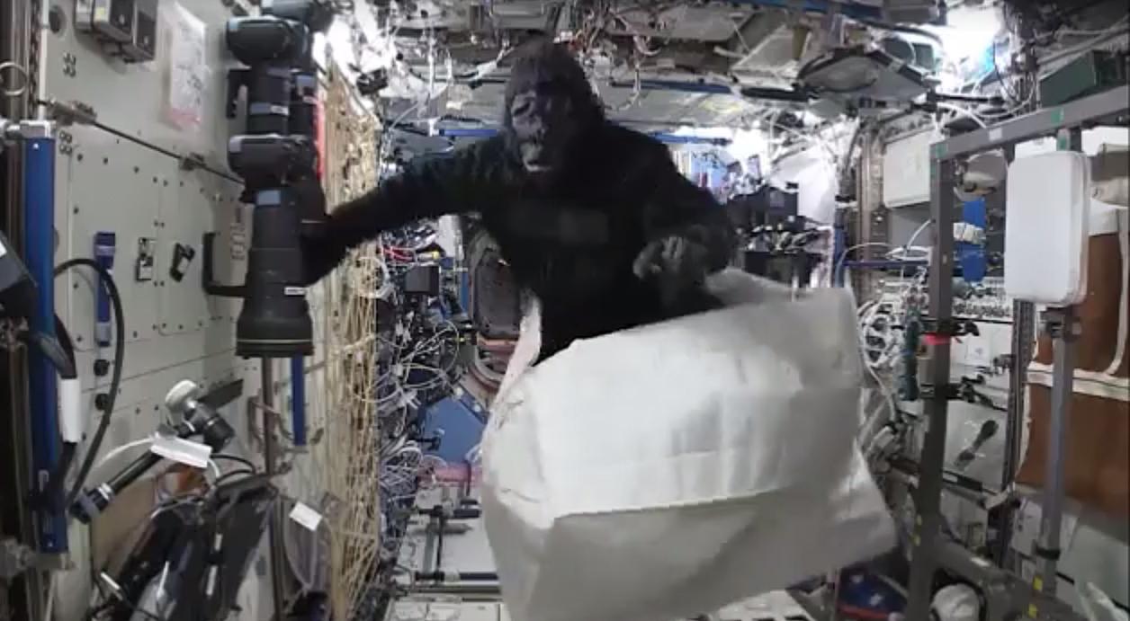 Astronaut Scott Kelly Goes Ape