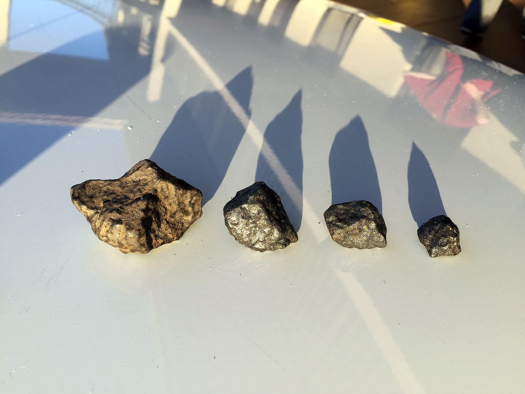 Photos: Hunting Meteorites from Florida Fireball in Osceola
