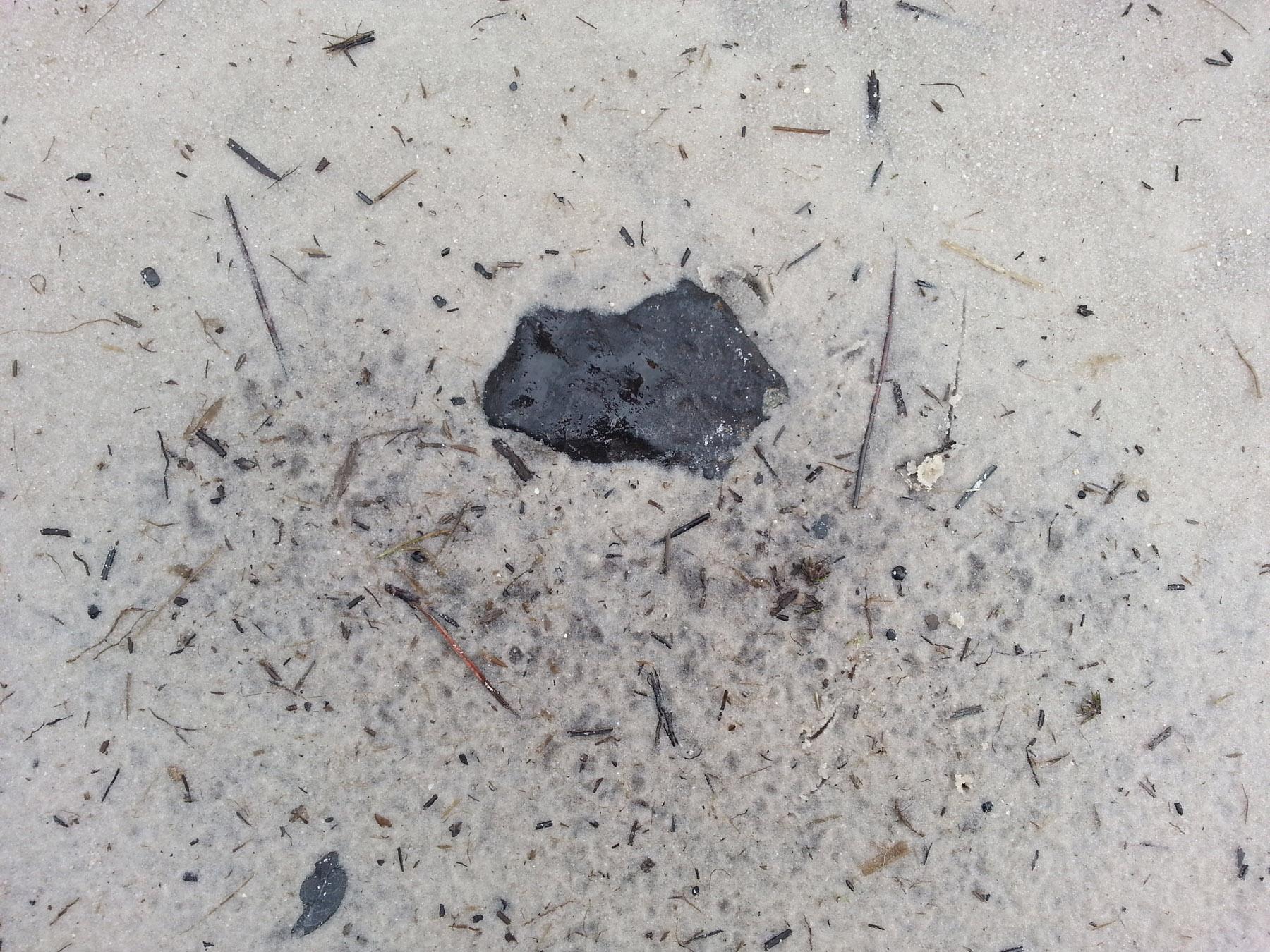 800 Gram Find in-situ in Osceola Meteorite Recovery