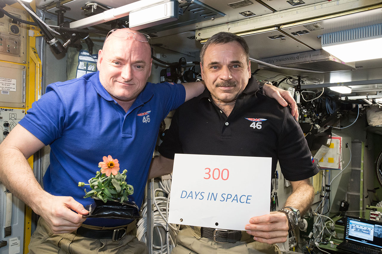 By the Numbers: Astronaut Scott Kelly's Year-in-Space Mission