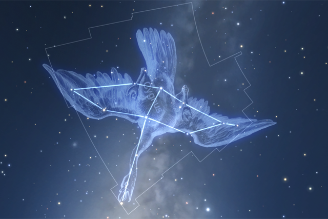 Cygnus in Star Chart for VR