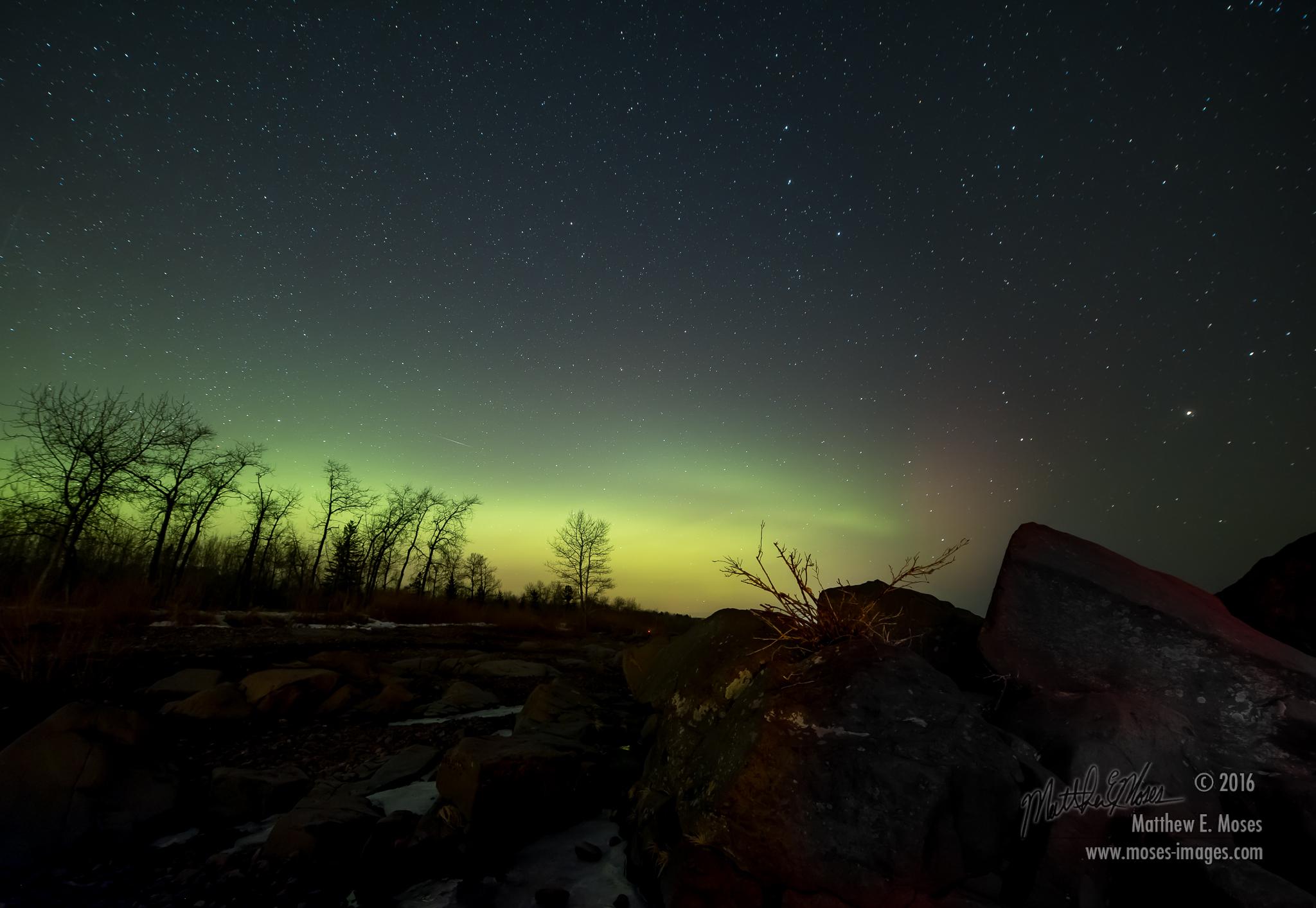 Green Aurora Lights Up the Minnesota Night in Skywatcher Photo