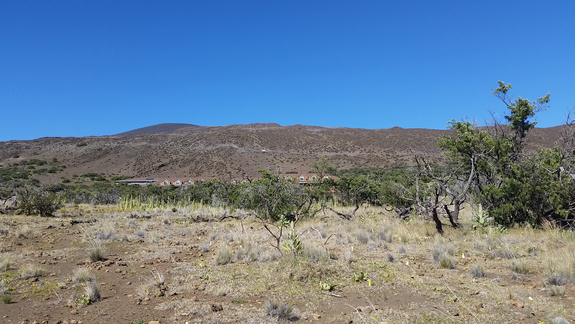 Looking up the mountain from halfway up, at the Mauna Kea Visitor Center.