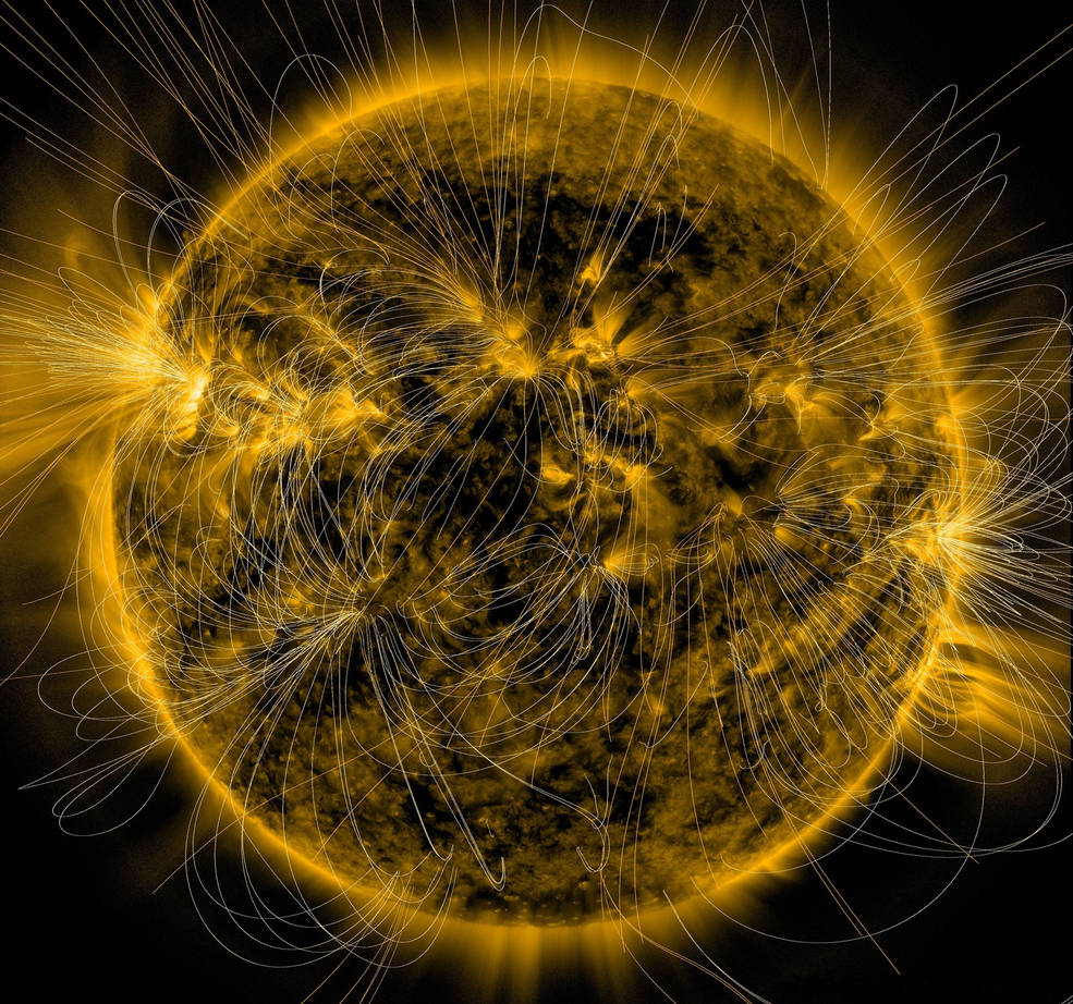 Sun Writhes with Magnetic Field Lines in New Vizualization (Photo)