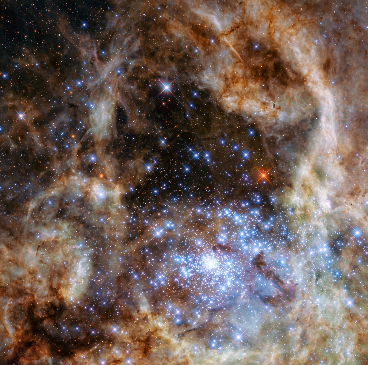 Mon-Stars! Cluster of Massive Suns Spotted by Hubble Telescope (Photo)