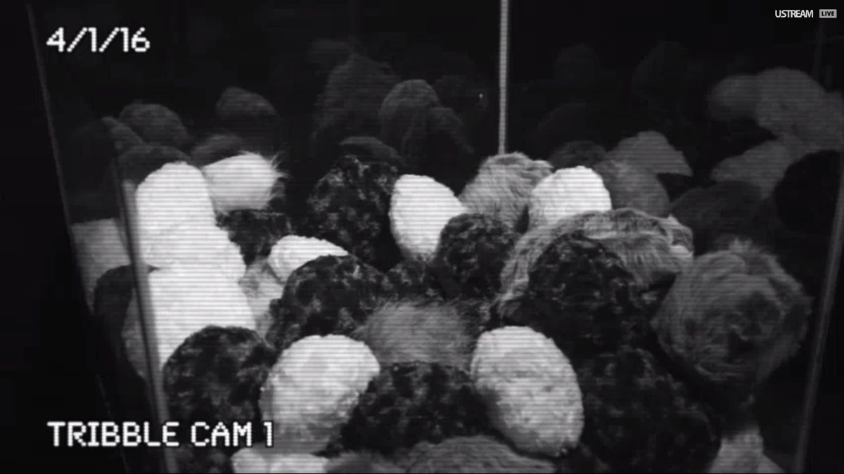 Tribble Cam