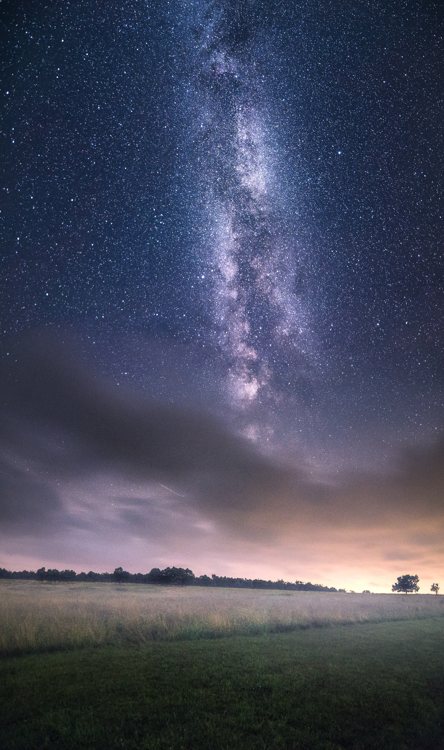 Milky Way Meets Meadow in Skywatcher Photo