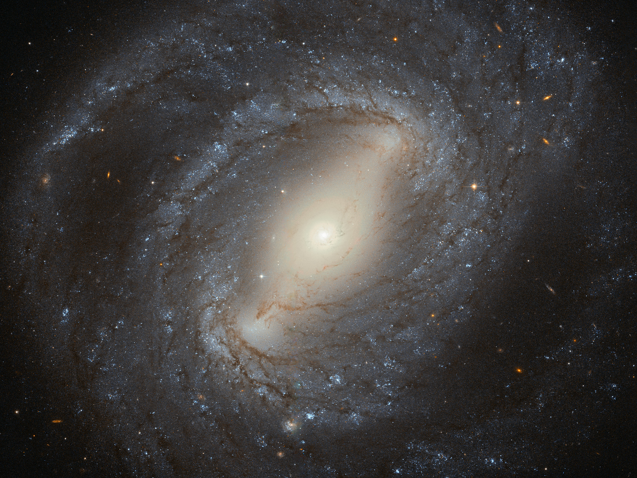 The barred spiral galaxy NGC 4394 sparkles in this stunning view from the Hubble Space Telescope released on May 2, 2016.