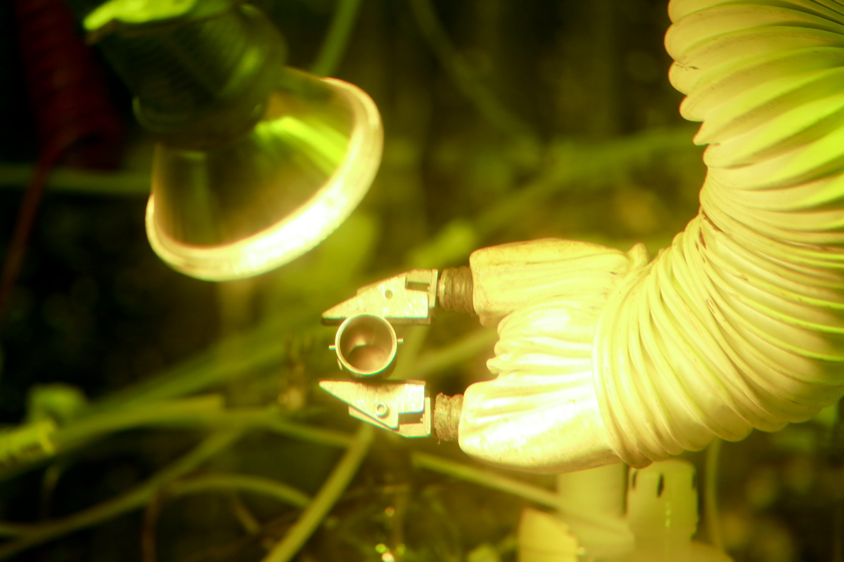Plutonium-238 Production Image