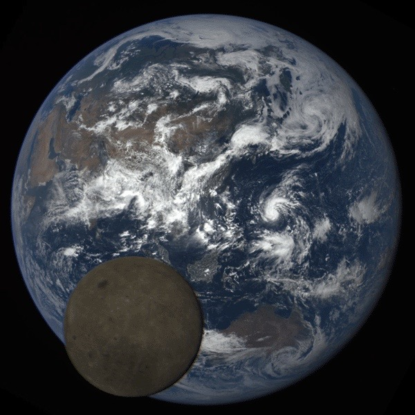 Moon Photobombs Earth Again: DSCOVR View