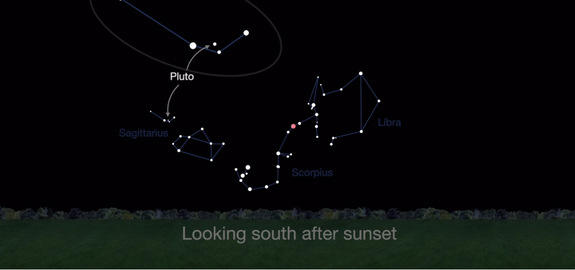 Pluto can be found in the constellation Sagittarius (see inset) in August 2016. But you will need a telescope to find it.