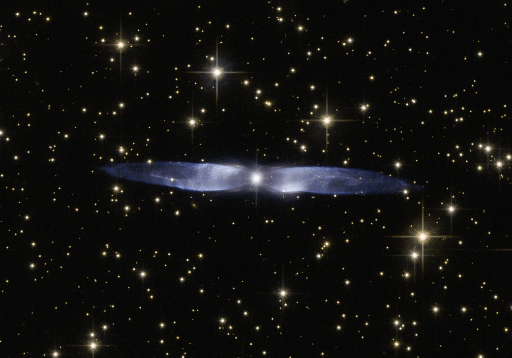 A Nebula Hen