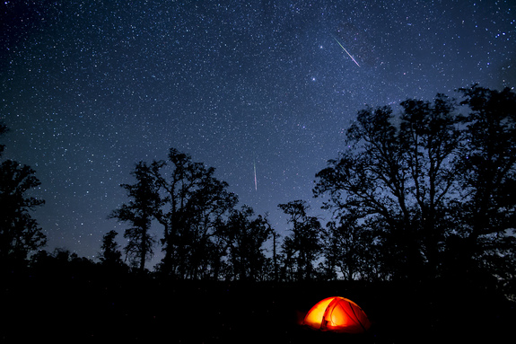 Perseid meteors light adult a sky above California's Berryessa-Snow Mountain National Monument in Aug 2015.