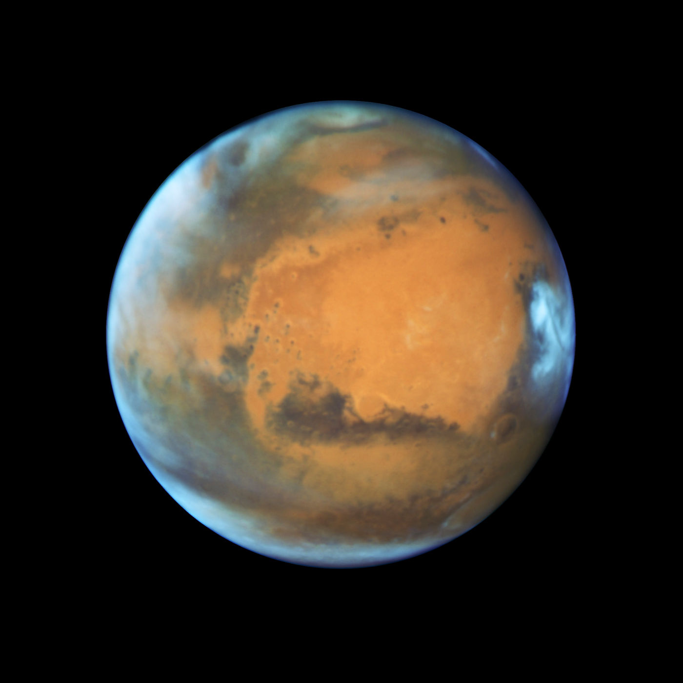What Earth's Oldest Fossils Mean for Finding Life on Mars