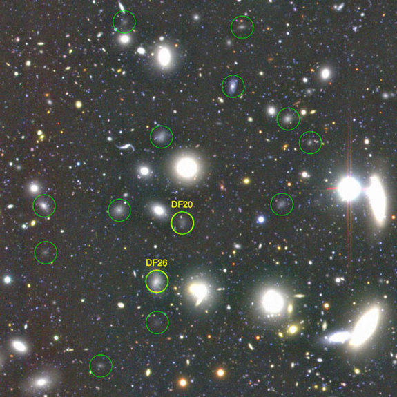 Some of the 854 ultra-diffuse galaxies found by the Subaru Telescope in the Coma galaxy cluster, about 300 million light-years away. Three hundred and thirty-two of them are Milky Way-size.