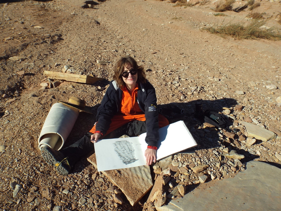 Me drawing honeycomb weathering on sandstone boulders at the Valley of the Stars.