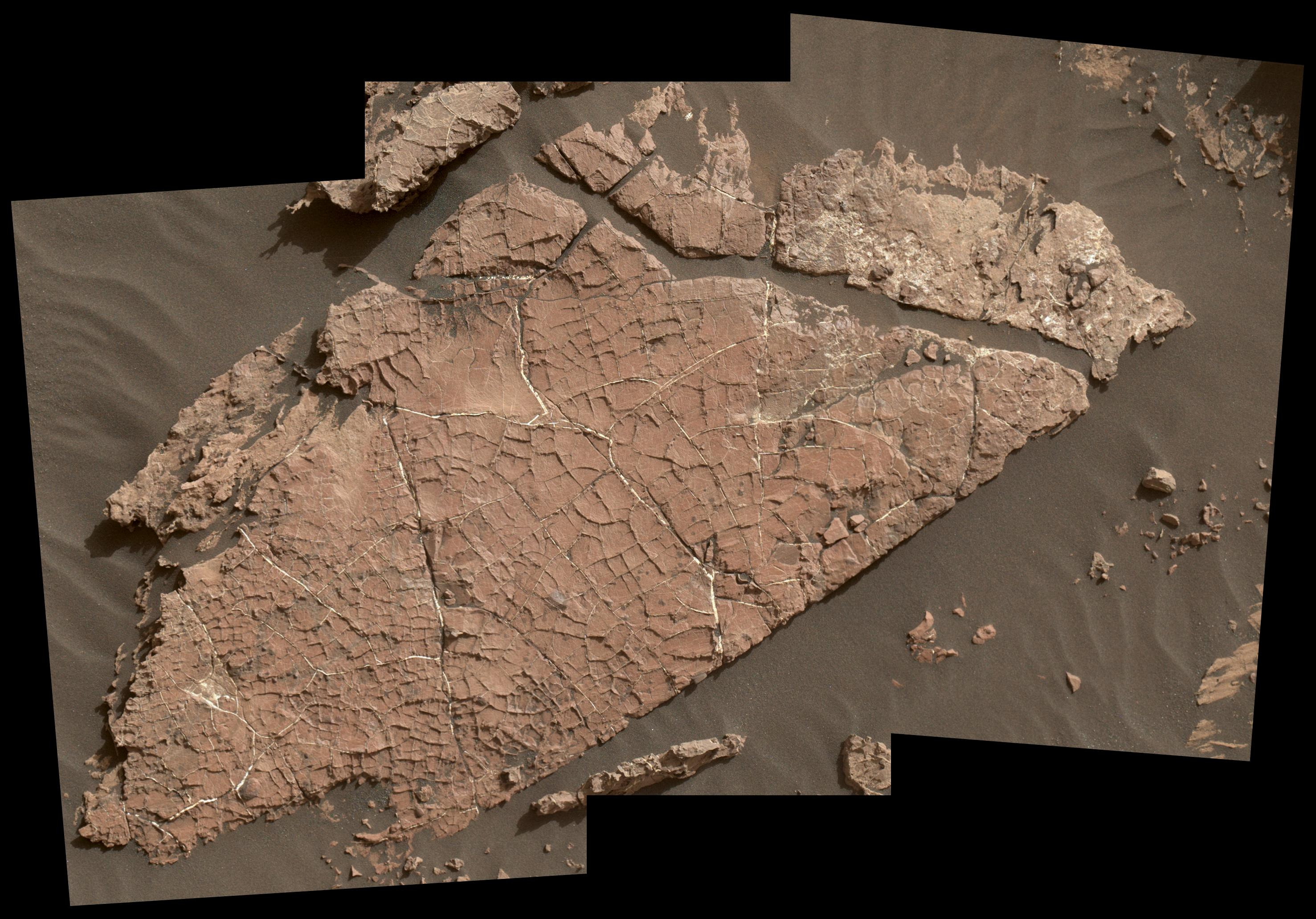 Mud Cracks on Mars Suggest a Watery Ancient Past